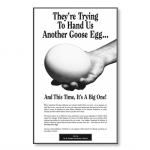 ATA American Airlines Goose Egg